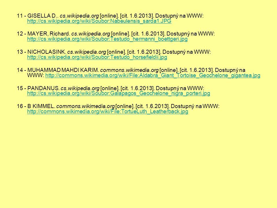 11 - GISELLA D.. cs.wikipedia.org [online]. [cit. 1.6.2013]. Dostupný na WWW: http://cs.wikipedia.org/wiki/Soubor:Nabeulensis_sarda1.JPG http://cs.wik