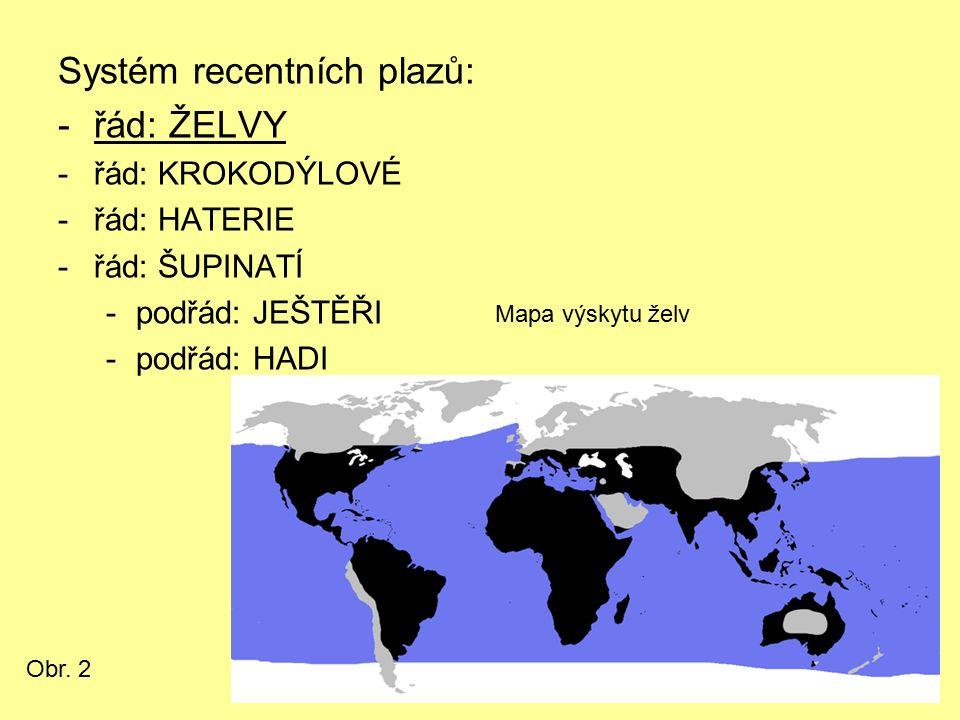 Systém recentních plazů: -řád: ŽELVY -řád: KROKODÝLOVÉ -řád: HATERIE -řád: ŠUPINATÍ -podřád: JEŠTĚŘI -podřád: HADI Mapa výskytu želv Obr. 2