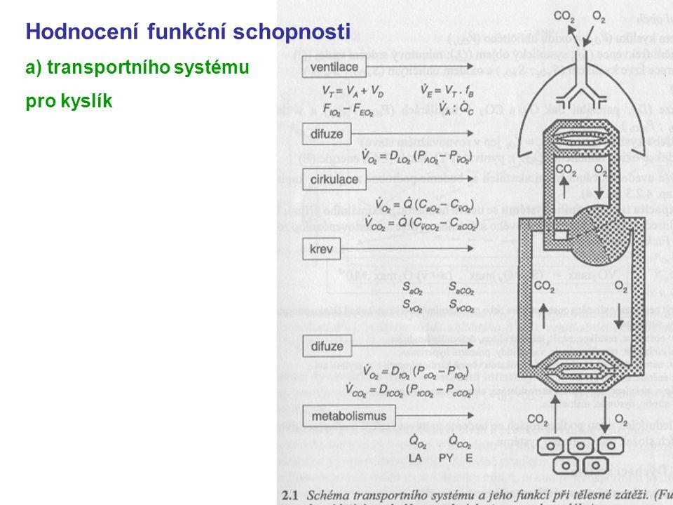 Hodnocení funkční schopnosti a) transportního systému pro kyslík