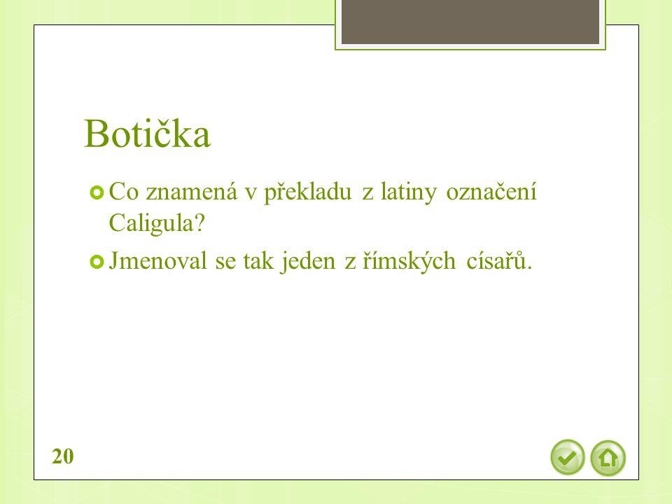 Botička  Co znamená v překladu z latiny označení Caligula.