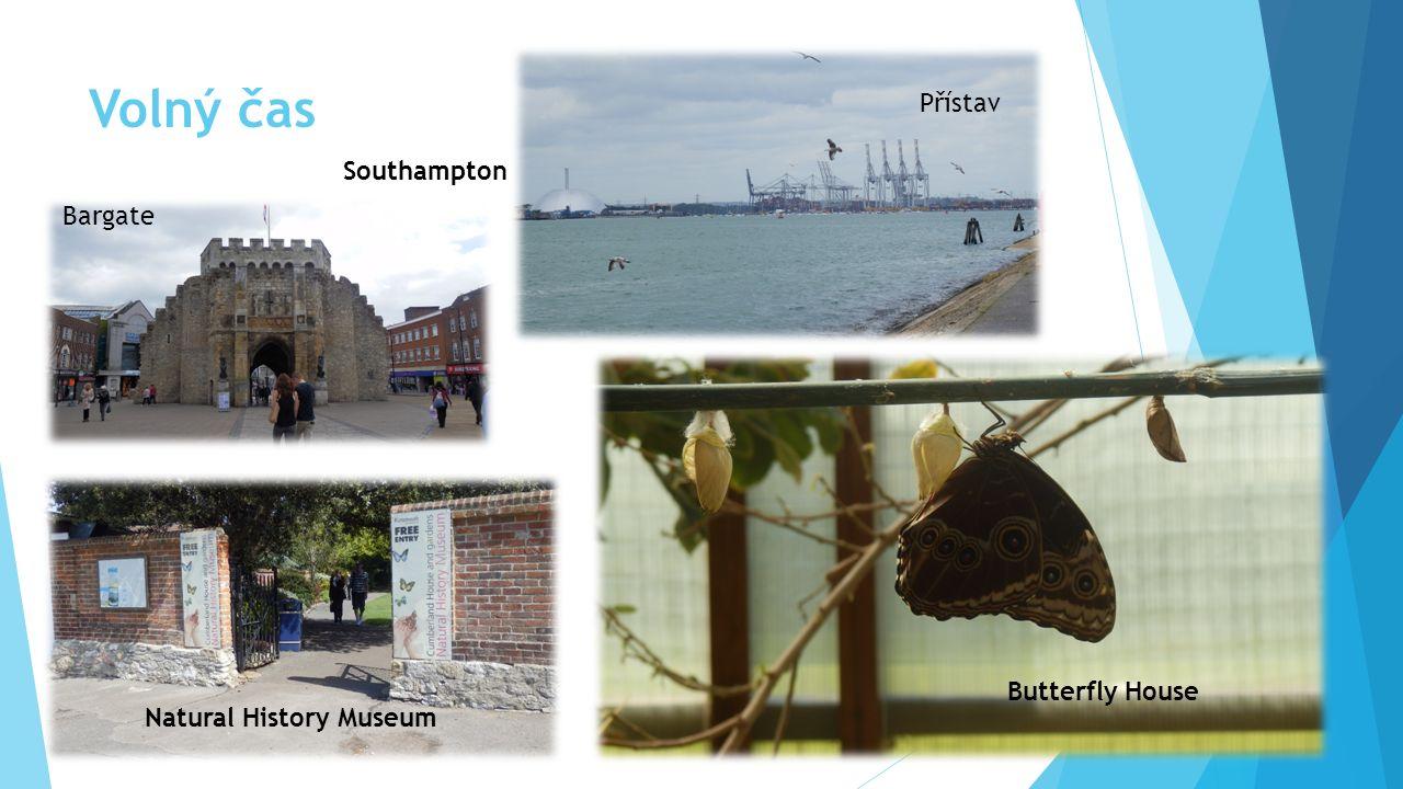 Volný čas Southampton Bargate Přístav Natural History Museum Butterfly House