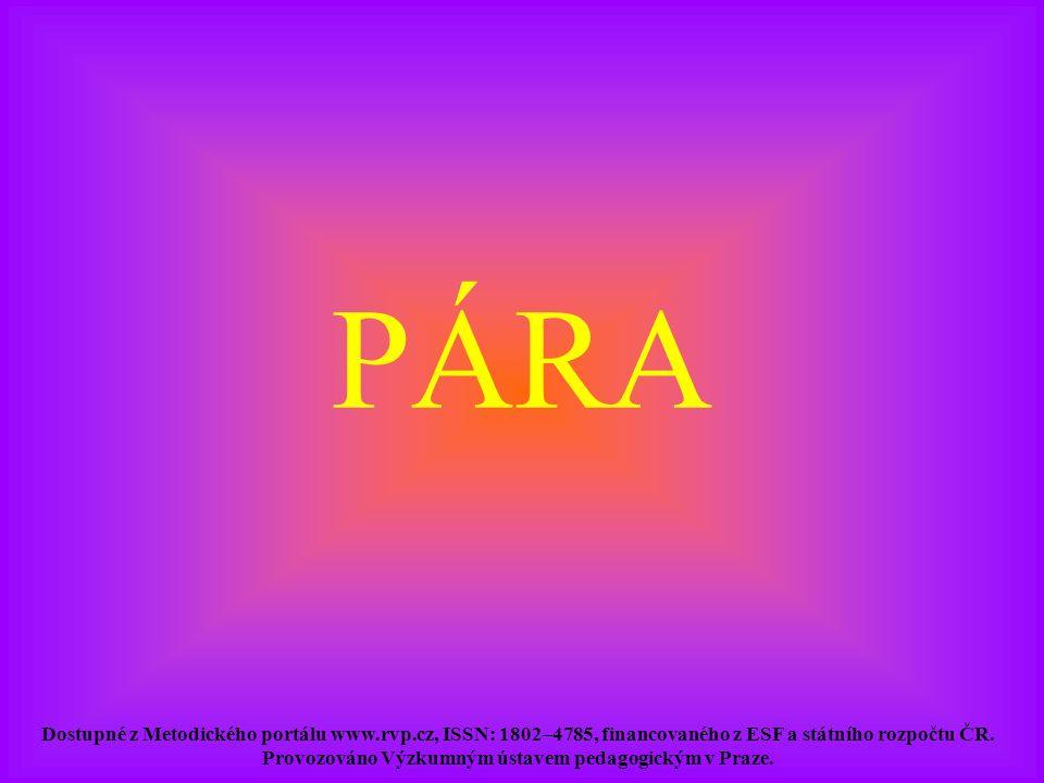 PÁRA Dostupné z Metodického portálu www.rvp.cz, ISSN: 1802–4785, financovaného z ESF a státního rozpočtu ČR. Provozováno Výzkumným ústavem pedagogický