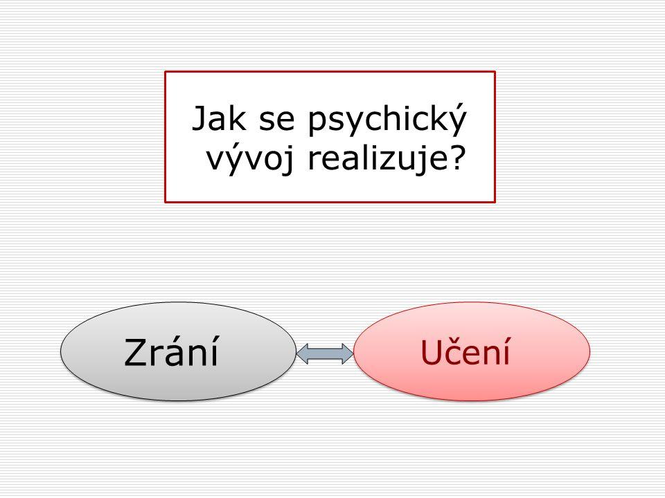 Jak se psychický vývoj realizuje? Zrání Učení