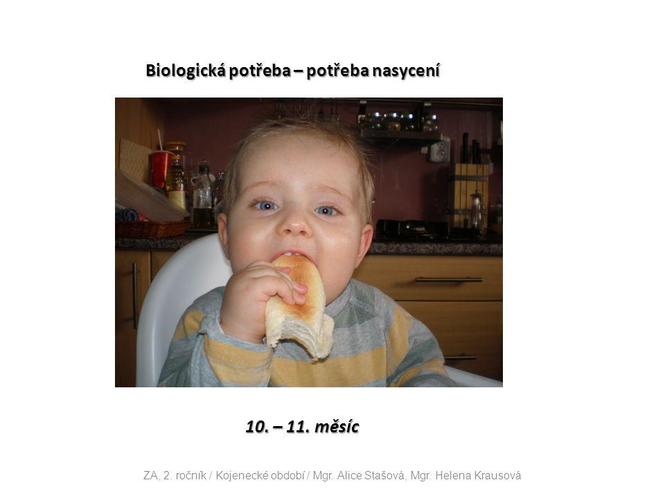 Biologická potřeba – potřeba nasycení 10. – 11. měsíc ZA, 2.
