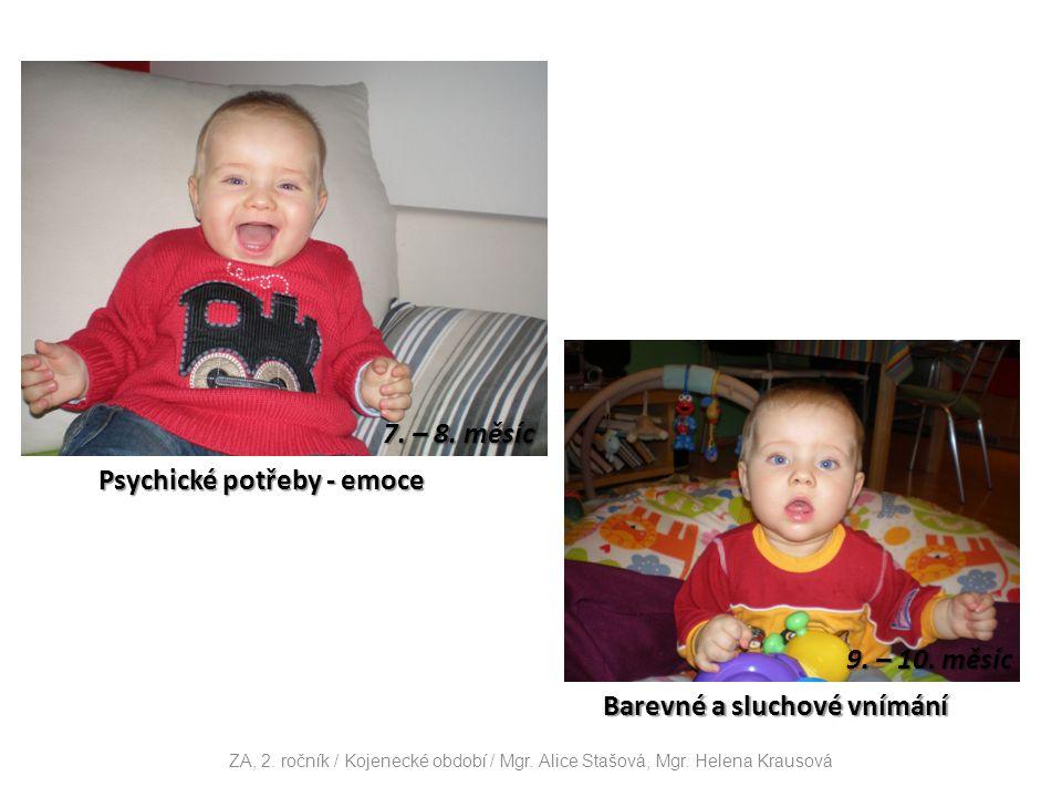 Psychické potřeby - emoce 7. – 8. měsíc Barevné a sluchové vnímání 9.