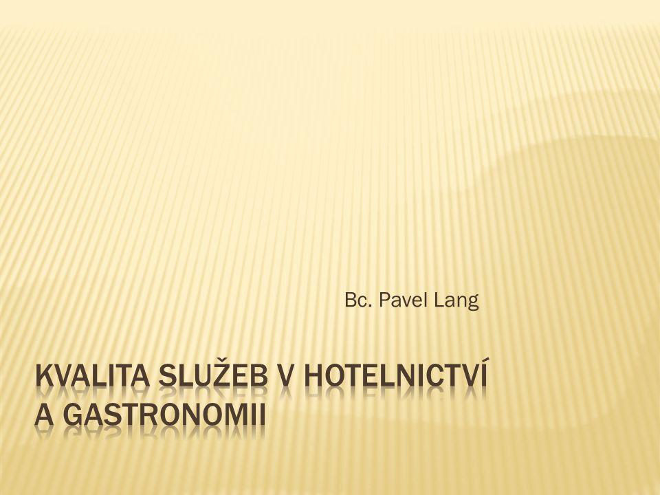 Bc. Pavel Lang