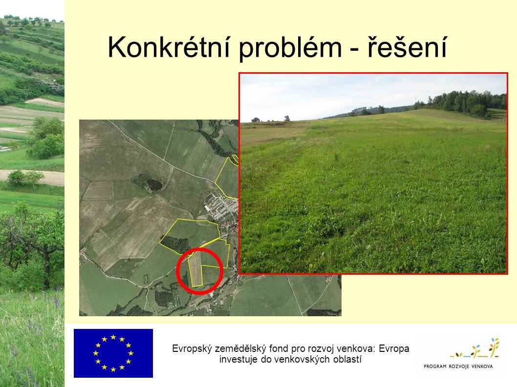 Konkrétní problém - řešení Evropský zemědělský fond pro rozvoj venkova: Evropa investuje do venkovských oblastí