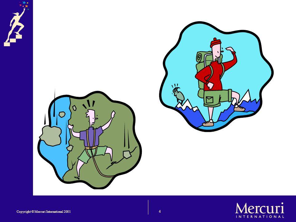 4 Copyright © Mercuri International 2001