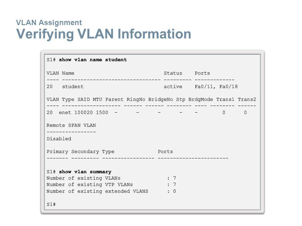 VLAN Assignment Verifying VLAN Information