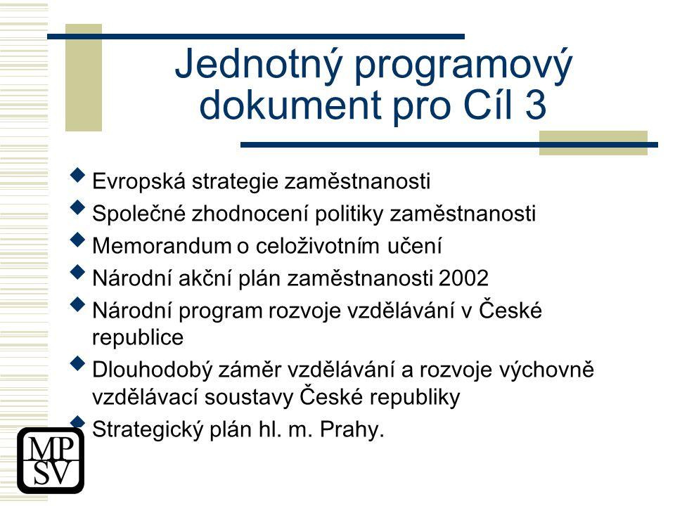 Jednotný programový dokument pro Cíl 3  Evropská strategie zaměstnanosti  Společné zhodnocení politiky zaměstnanosti  Memorandum o celoživotním učení  Národní akční plán zaměstnanosti 2002  Národní program rozvoje vzdělávání v České republice  Dlouhodobý záměr vzdělávání a rozvoje výchovně vzdělávací soustavy České republiky  Strategický plán hl.