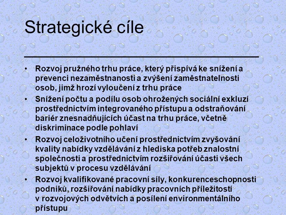 Strategické cíle ________________________ Rozvoj pružného trhu práce, který přispívá ke snížení a prevenci nezaměstnanosti a zvýšení zaměstnatelnosti osob, jimž hrozí vyloučení z trhu práce Snížení počtu a podílu osob ohrožených sociální exkluzí prostřednictvím integrovaného přístupu a odstraňování bariér znesnadňujících účast na trhu práce, včetně diskriminace podle pohlaví Rozvoj celoživotního učení prostřednictvím zvyšování kvality nabídky vzdělávání z hlediska potřeb znalostní společnosti a prostřednictvím rozšiřování účasti všech subjektů v procesu vzdělávání Rozvoj kvalifikované pracovní síly, konkurenceschopnosti podniků, rozšiřování nabídky pracovních příležitostí v rozvojových odvětvích a posílení environmentálního přístupu