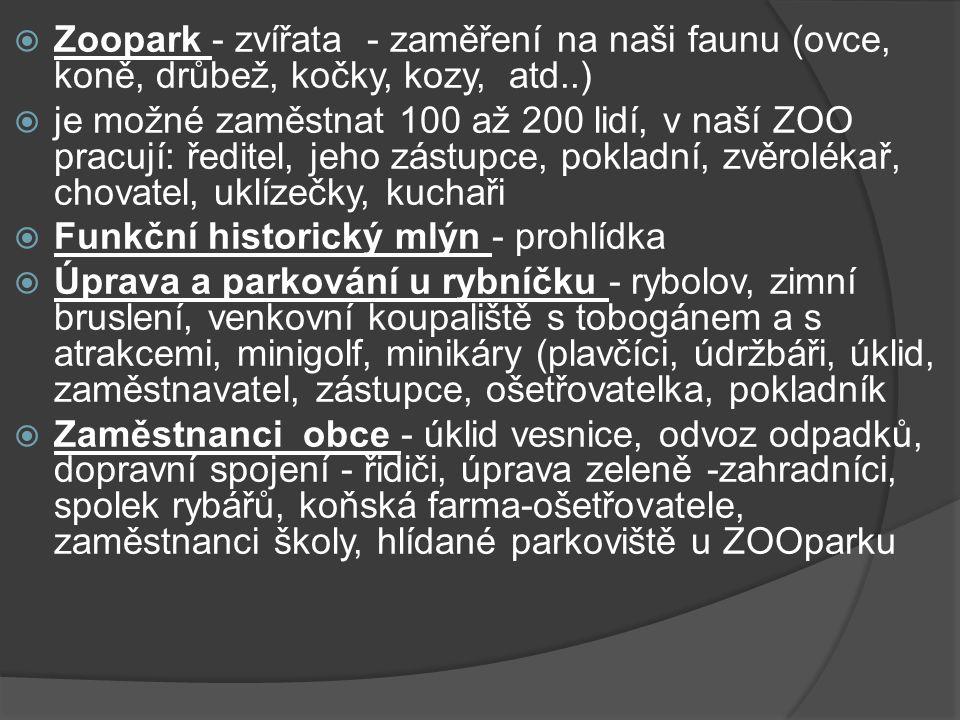  Zoopark - zvířata - zaměření na naši faunu (ovce, koně, drůbež, kočky, kozy, atd..)  je možné zaměstnat 100 až 200 lidí, v naší ZOO pracují: ředitel, jeho zástupce, pokladní, zvěrolékař, chovatel, uklízečky, kuchaři  Funkční historický mlýn - prohlídka  Úprava a parkování u rybníčku - rybolov, zimní bruslení, venkovní koupaliště s tobogánem a s atrakcemi, minigolf, minikáry (plavčíci, údržbáři, úklid, zaměstnavatel, zástupce, ošetřovatelka, pokladník  Zaměstnanci obce - úklid vesnice, odvoz odpadků, dopravní spojení - řidiči, úprava zeleně -zahradníci, spolek rybářů, koňská farma-ošetřovatele, zaměstnanci školy, hlídané parkoviště u ZOOparku
