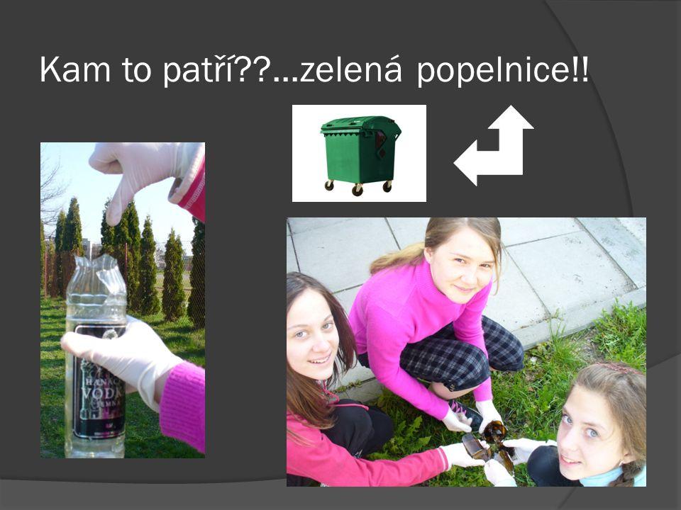 Kam to patří ...zelená popelnice!!