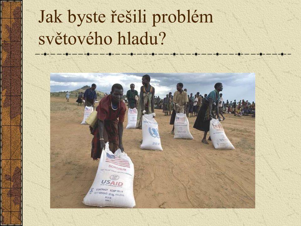 Jak byste řešili problém světového hladu?