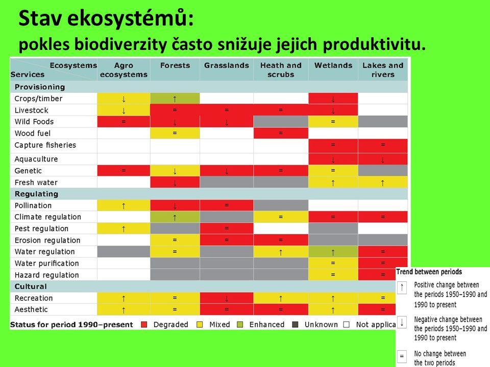 Stav ekosystémů: pokles biodiverzity často snižuje jejich produktivitu.
