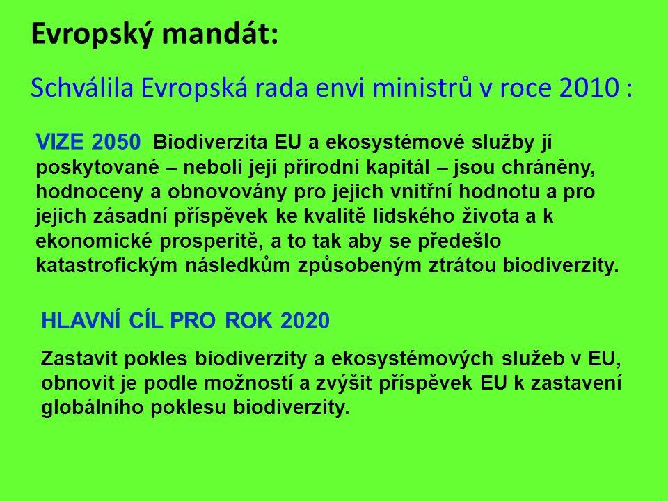 Evropský mandát: Schválila Evropská rada envi ministrů v roce 2010 : VIZE 2050 Biodiverzita EU a ekosystémové služby jí poskytované – neboli její přír