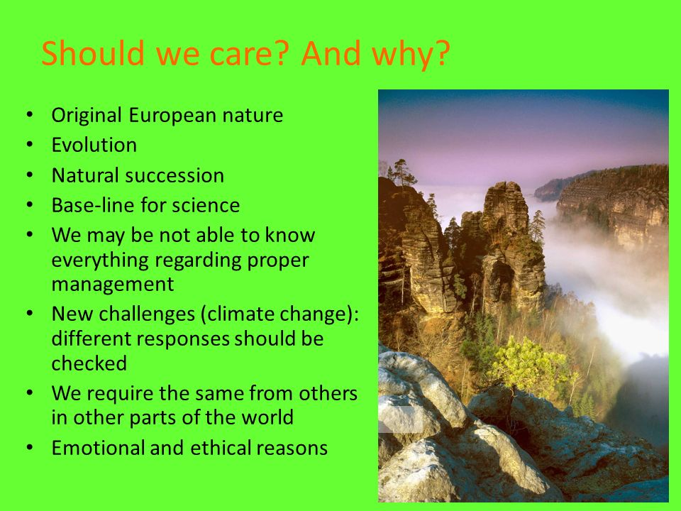 Should we care? And why? Original European nature Evolution Natural succession Base-line for science We may be not able to know everything regarding p
