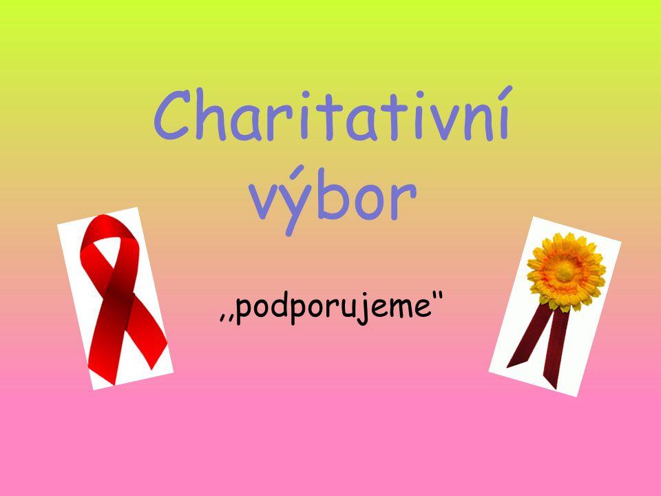 Charitativní výbor,,podporujeme''
