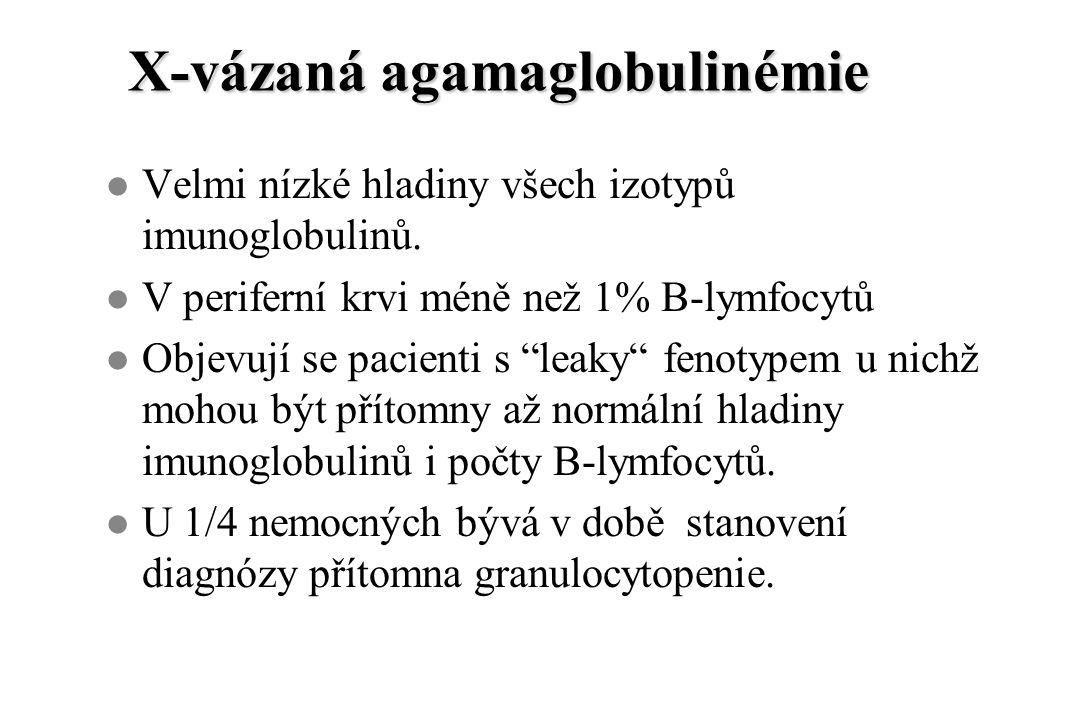 """X-vázaná agamaglobulinémie l Velmi nízké hladiny všech izotypů imunoglobulinů. l V periferní krvi méně než 1% B-lymfocytů l Objevují se pacienti s """"le"""