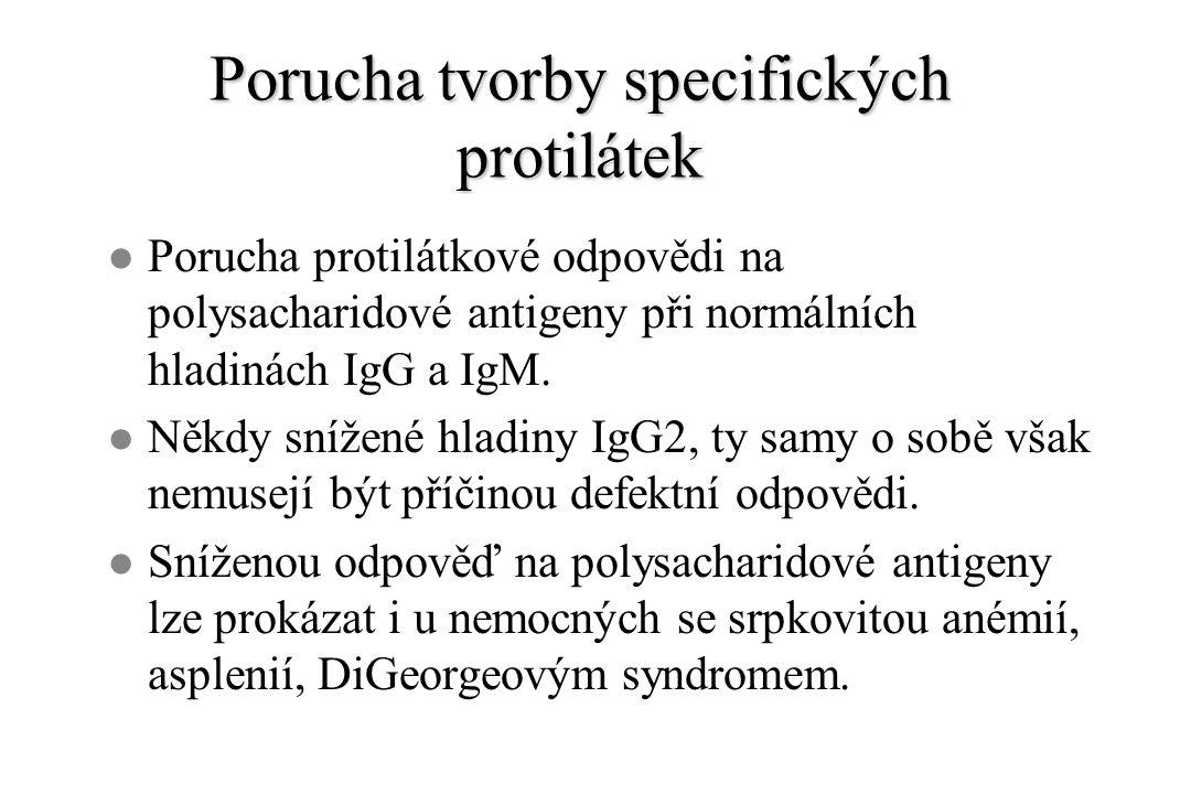 Porucha tvorby specifických protilátek l Porucha protilátkové odpovědi na polysacharidové antigeny při normálních hladinách IgG a IgM. l Někdy snížené