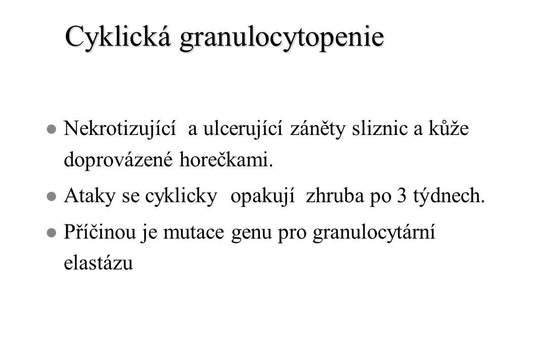 Cyklická granulocytopenie l Nekrotizující a ulcerující záněty sliznic a kůže doprovázené horečkami. l Ataky se cyklicky opakují zhruba po 3 týdnech. l
