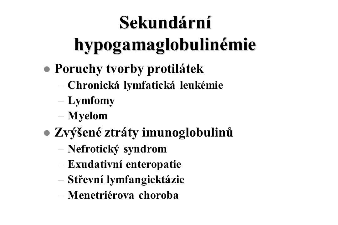 Sekundární hypogamaglobulinémie l Poruchy tvorby protilátek –Chronická lymfatická leukémie –Lymfomy –Myelom l Zvýšené ztráty imunoglobulinů –Nefrotický syndrom –Exudativní enteropatie –Střevní lymfangiektázie –Menetriérova choroba