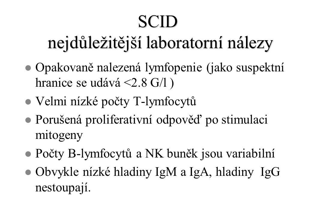 SCID nejdůležitější laboratorní nálezy l Opakovaně nalezená lymfopenie (jako suspektní hranice se udává <2.8 G/l ) l Velmi nízké počty T-lymfocytů l Porušená proliferativní odpověď po stimulaci mitogeny l Počty B-lymfocytů a NK buněk jsou variabilní l Obvykle nízké hladiny IgM a IgA, hladiny IgG nestoupají.
