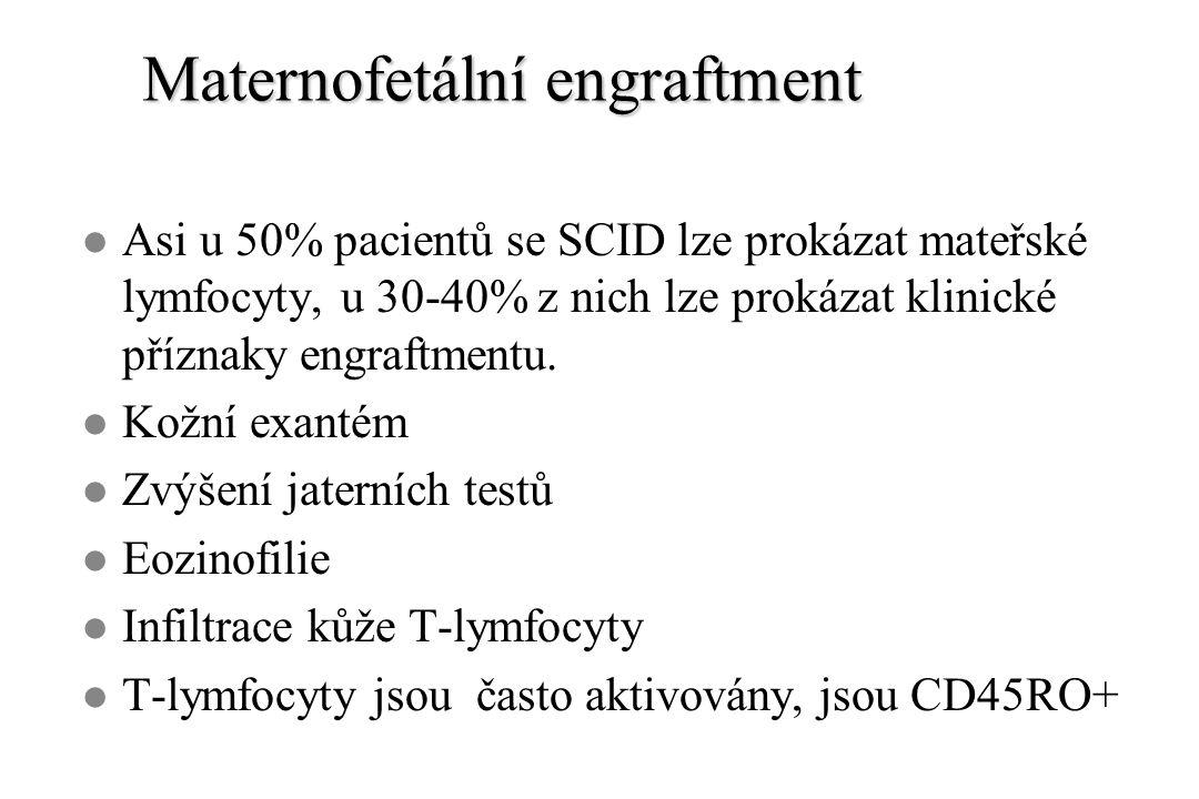 Maternofetální engraftment l Asi u 50% pacientů se SCID lze prokázat mateřské lymfocyty, u 30-40% z nich lze prokázat klinické příznaky engraftmentu.