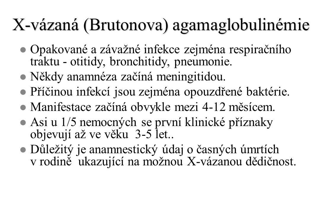 X-vázaná (Brutonova) agamaglobulinémie l Opakované a závažné infekce zejména respiračního traktu - otitidy, bronchitidy, pneumonie. l Někdy anamnéza z