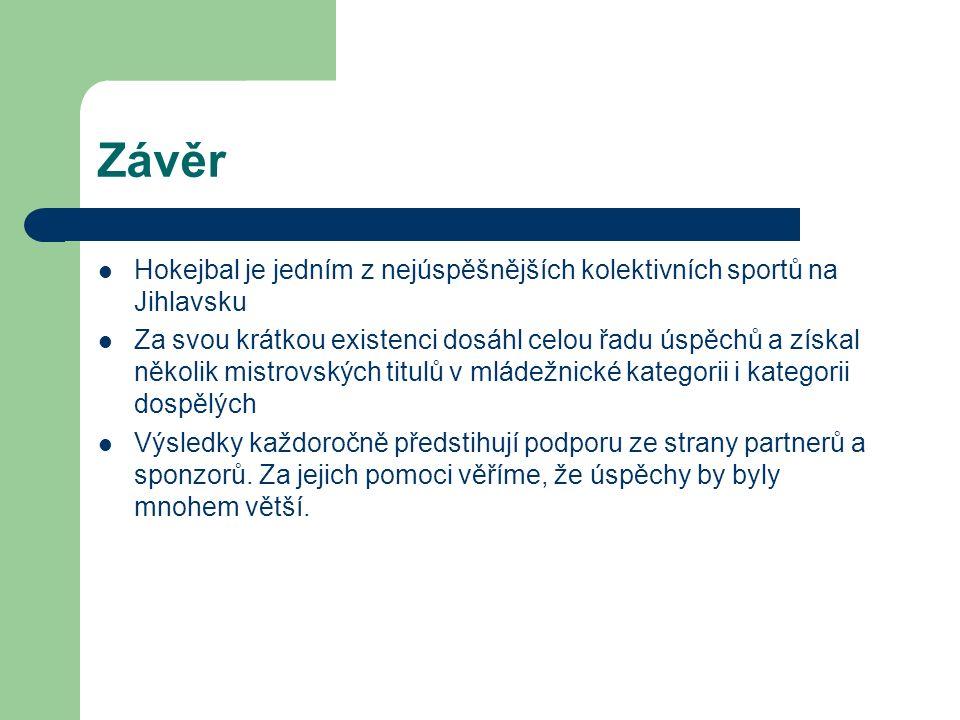 Závěr Hokejbal je jedním z nejúspěšnějších kolektivních sportů na Jihlavsku Za svou krátkou existenci dosáhl celou řadu úspěchů a získal několik mistrovských titulů v mládežnické kategorii i kategorii dospělých Výsledky každoročně předstihují podporu ze strany partnerů a sponzorů.