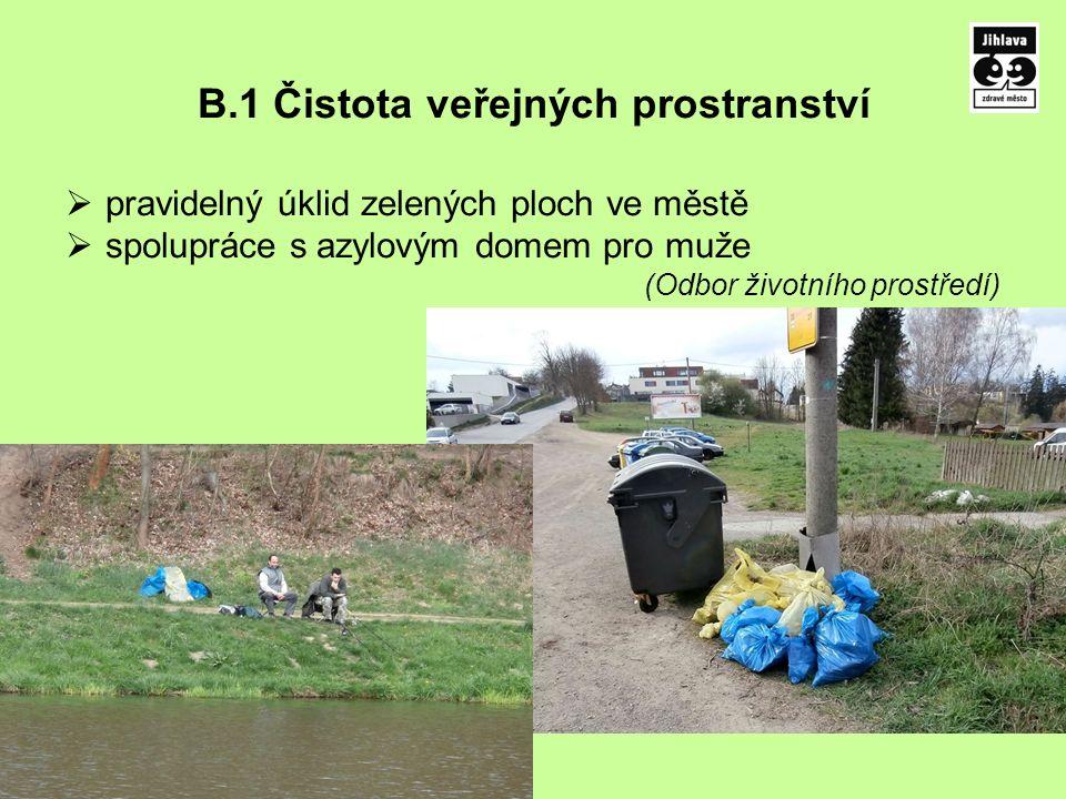 B.1 Čistota veřejných prostranství  pravidelný úklid zelených ploch ve městě  spolupráce s azylovým domem pro muže (Odbor životního prostředí)