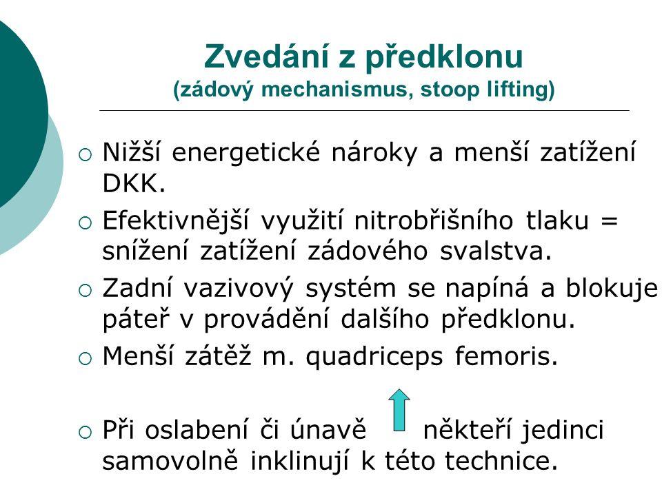 Zvedání z předklonu (zádový mechanismus, stoop lifting)  Nižší energetické nároky a menší zatížení DKK.
