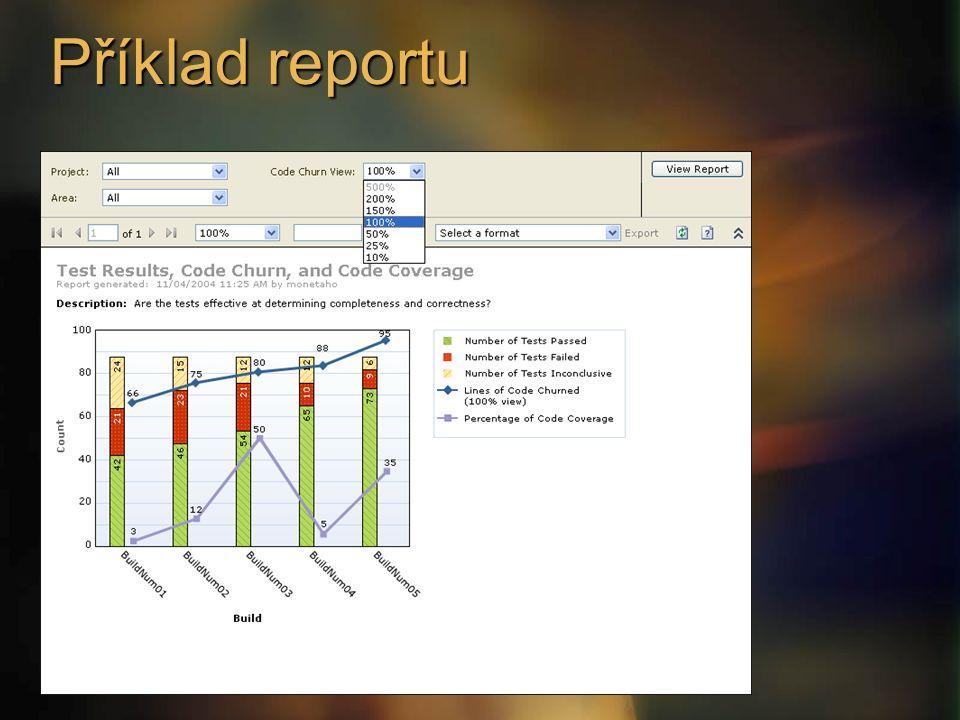 Příklad reportu