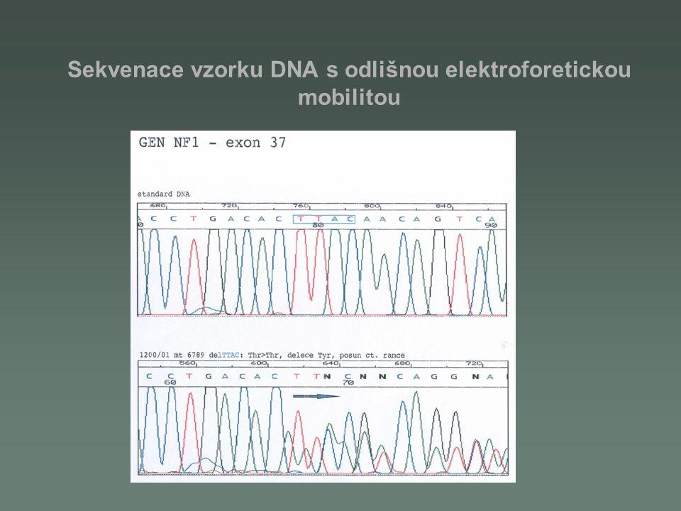 Sekvenace vzorku DNA s odlišnou elektroforetickou mobilitou