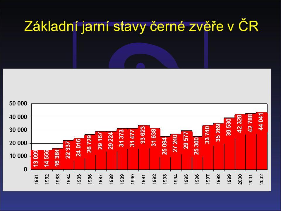 Základní jarní stavy černé zvěře v ČR
