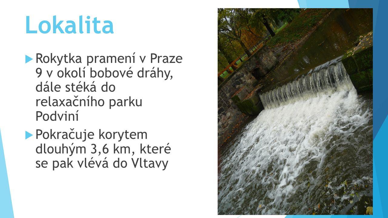 Lokalita  Rokytka pramení v Praze 9 v okolí bobové dráhy, dále stéká do relaxačního parku Podviní  Pokračuje korytem dlouhým 3,6 km, které se pak vlévá do Vltavy