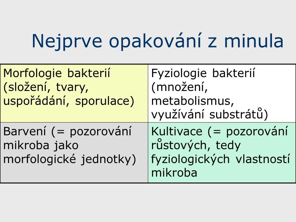 Nejprve opakování z minula Morfologie bakterií (složení, tvary, uspořádání, sporulace) Fyziologie bakterií (množení, metabolismus, využívání substrátů) Barvení (= pozorování mikroba jako morfologické jednotky) Kultivace (= pozorování růstových, tedy fyziologických vlastností mikroba