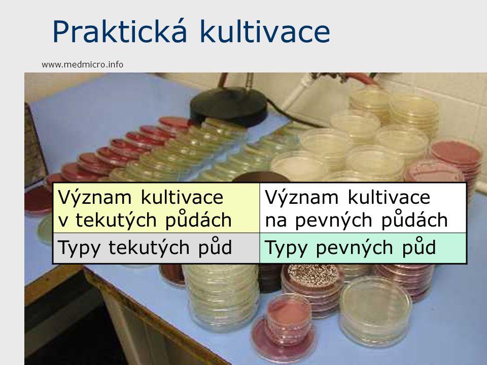 Praktická kultivace Význam kultivace v tekutých půdách Význam kultivace na pevných půdách Typy tekutých půdTypy pevných půd www.medmicro.info