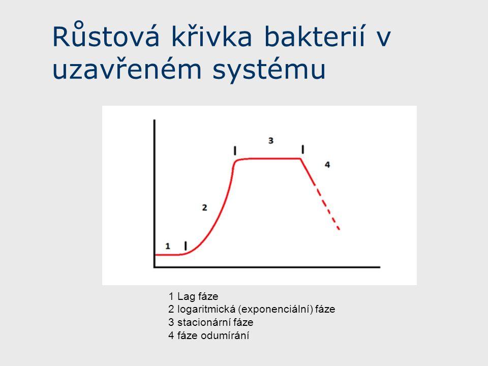 Růstová křivka bakterií v uzavřeném systému 1 Lag fáze 2 logaritmická (exponenciální) fáze 3 stacionární fáze 4 fáze odumírání