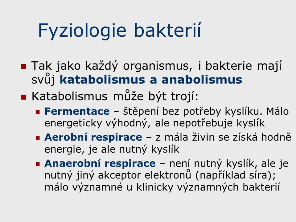 Fyziologie bakterií Tak jako každý organismus, i bakterie mají svůj katabolismus a anabolismus Katabolismus může být trojí: Fermentace – štěpení bez potřeby kyslíku.