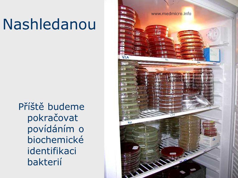 Nashledanou Příště budeme pokračovat povídáním o biochemické identifikaci bakterií www.medmicro.info