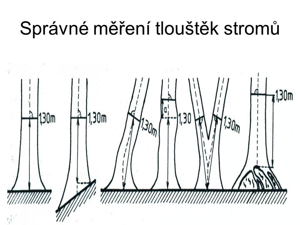 Správné měření tlouštěk stromů