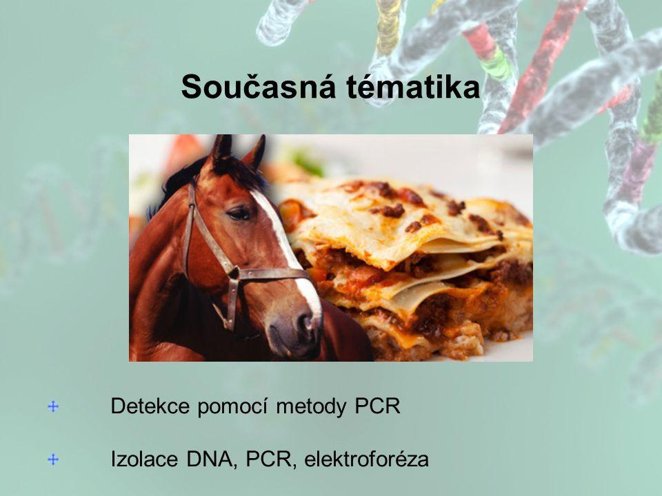Současná tématika Detekce pomocí metody PCR Izolace DNA, PCR, elektroforéza