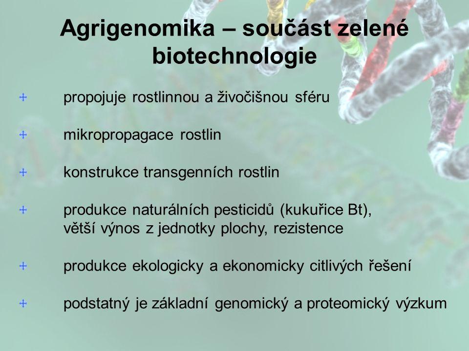 Agrigenomika – součást zelené biotechnologie propojuje rostlinnou a živočišnou sféru mikropropagace rostlin konstrukce transgenních rostlin produkce naturálních pesticidů (kukuřice Bt), větší výnos z jednotky plochy, rezistence produkce ekologicky a ekonomicky citlivých řešení podstatný je základní genomický a proteomický výzkum