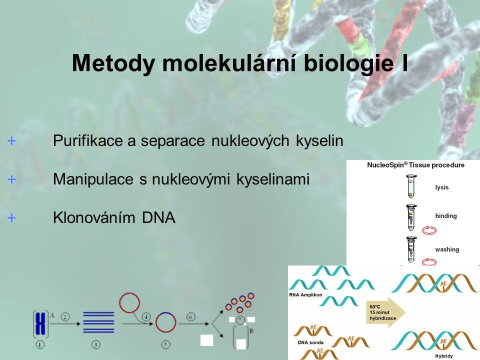 Metody molekulární biologie I Purifikace a separace nukleových kyselin Manipulace s nukleovými kyselinami Klonováním DNA