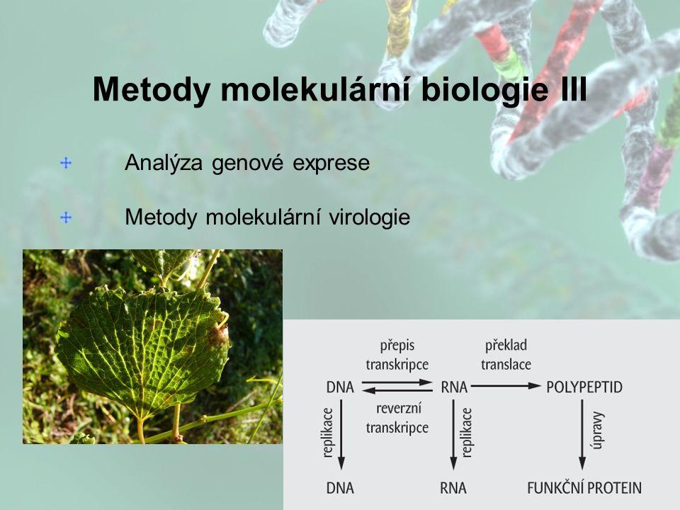 Metody molekulární biologie III Analýza genové exprese Metody molekulární virologie