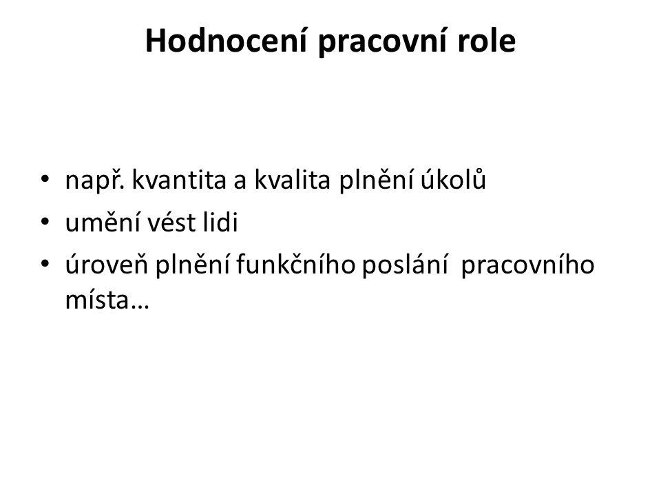 Hodnocení pracovní role např.