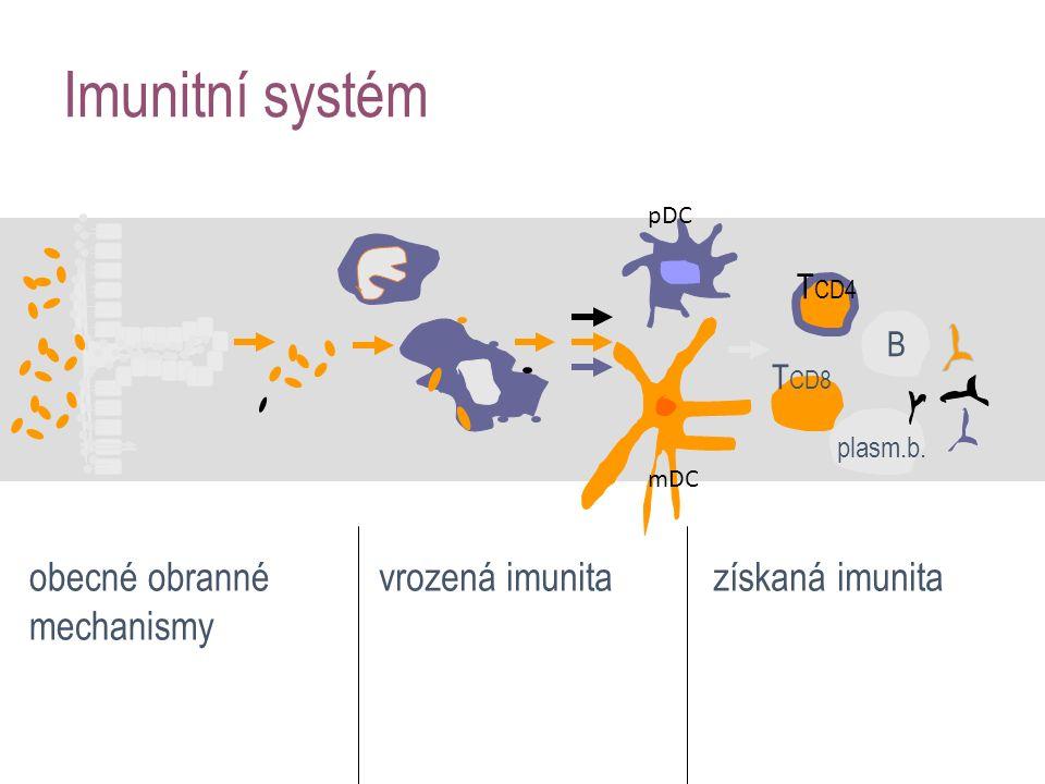Imunitní systém obecné obranné mechanismy vrozená imunitazískaná imunita B T CD4 plasm.b. T CD8 mDC pDC