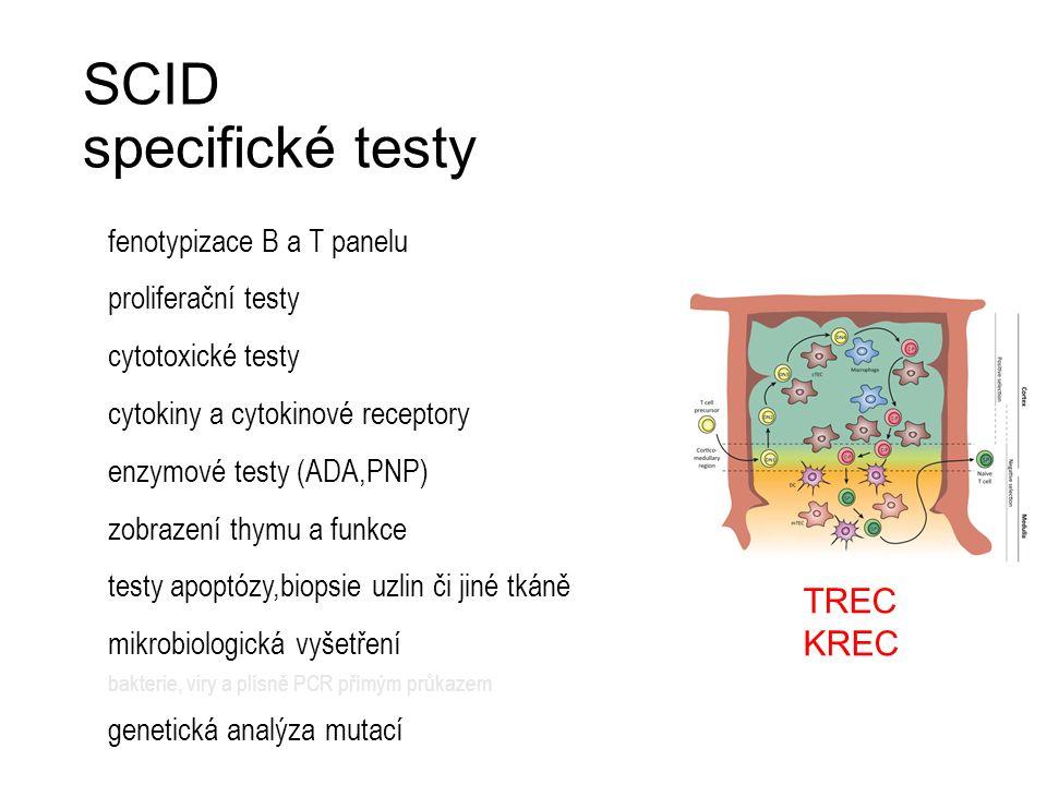 SCID specifické testy fenotypizace B a T panelu proliferační testy cytotoxické testy cytokiny a cytokinové receptory enzymové testy (ADA,PNP) zobrazen