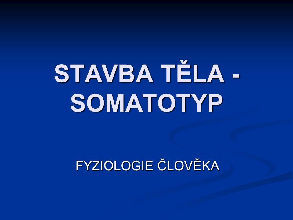 STAVBA TĚLA - SOMATOTYP FYZIOLOGIE ČLOVĚKA
